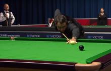 English Open – onko Ronnie O'Sullivan jälleen pysäyttämättömässä vireessä?